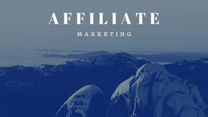 2 types of Affiliate Marketers - Why you need them both as Joint Venture partners