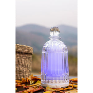 Perfume Bottle Aroma Diffuser