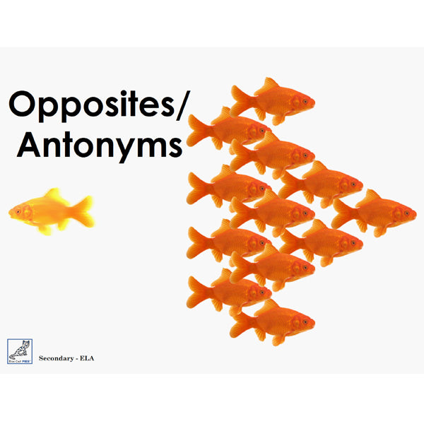 Opposites and Antonyms Book