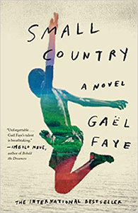 Small Country : A Novel (Paperback)