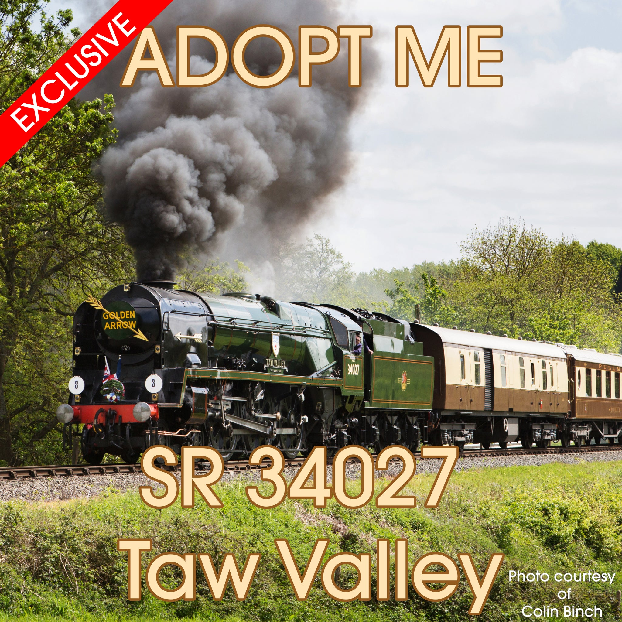 EXCLUSIVE - Adopt an Engine - SR 34027 Taw Valley