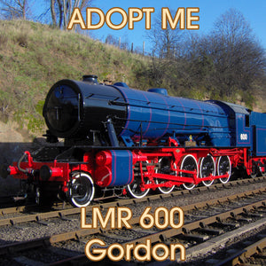 Adopt an Engine - LMR 600 Gordon Adoption Package