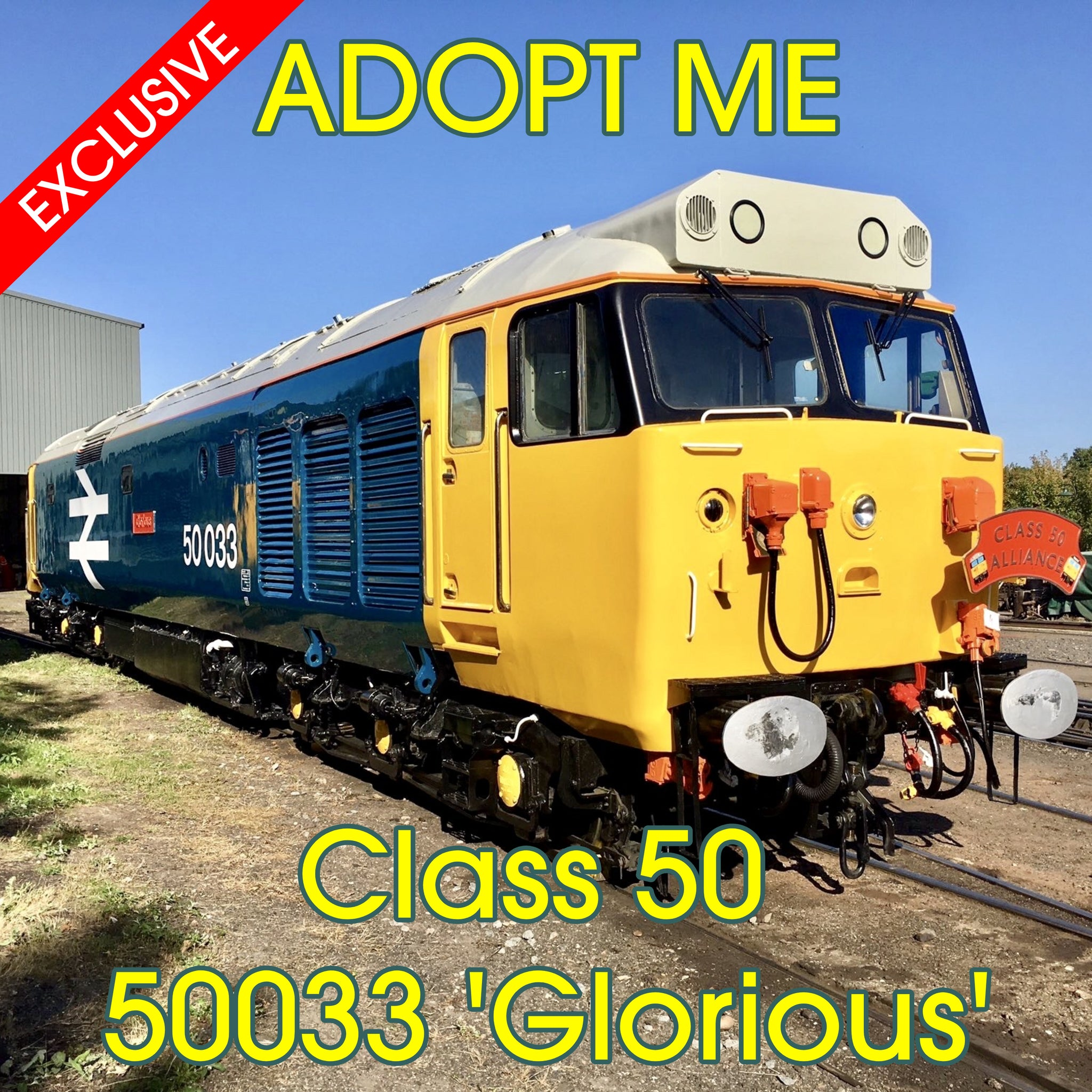 EXCLUSIVE - Adopt a Diesel Engine - Class 50 50033 'Glorious'
