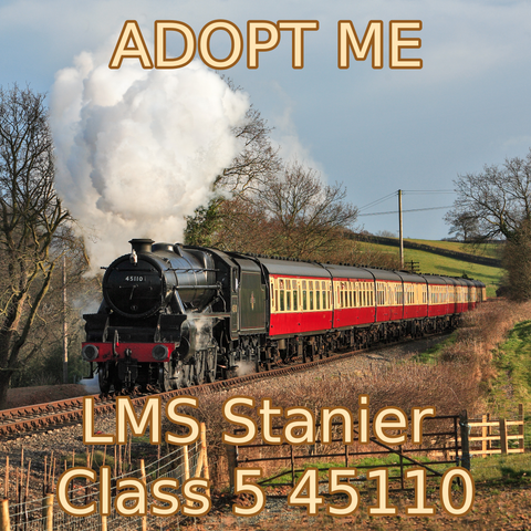 Adopt an Engine - LMS Stanier Class 5 45110 Adoption Package