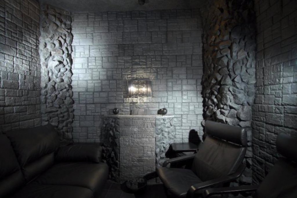 How About a Shungite Room?