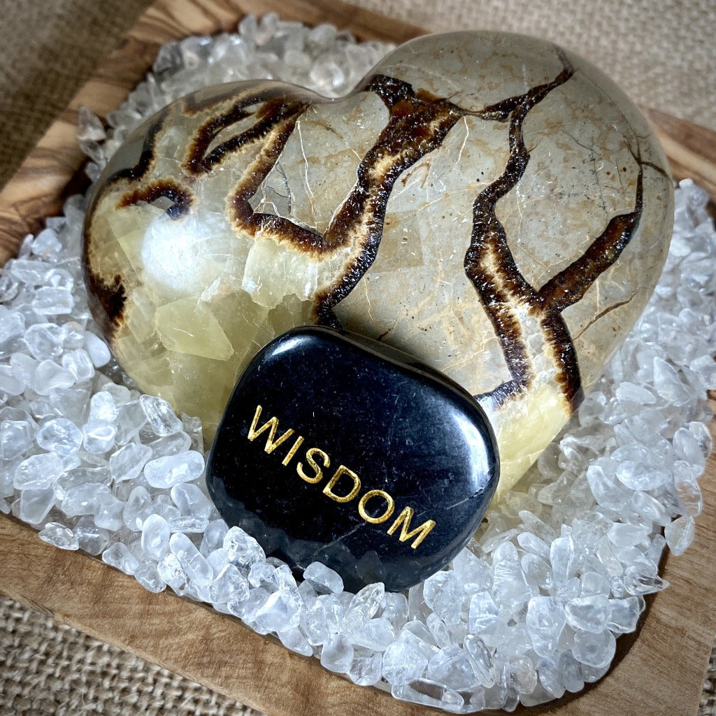 """Wisdom of the Heart"" Shungite Garden w/Septarian Nodule Heart on Quartz"