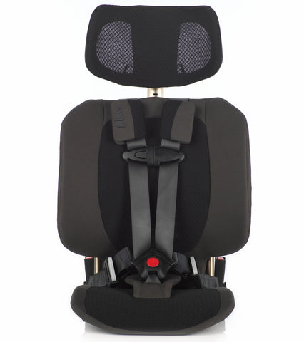 WAYB Pico Travel Car Seat - Earth