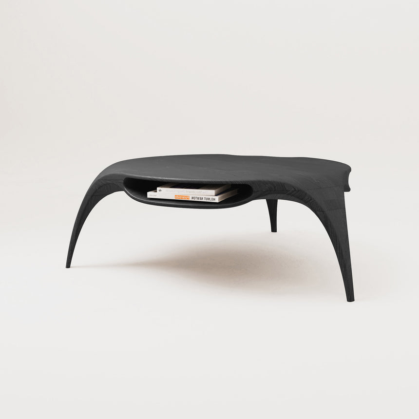 Sankao Coffee Table