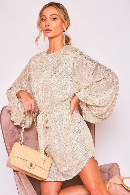 The Charlisa Sequin Dress