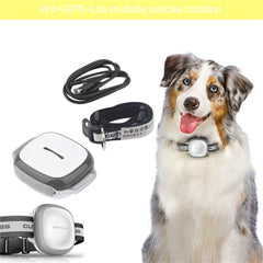Hot Intelligent Wireless Pet Finder GPS Waterproof Pet Dog Cat Accurate Collar Anti-Lost Security Tracker Locator Device