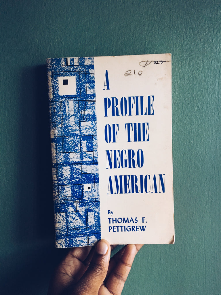 "Vintage Paperback ""A Profile of The Negro American"" by Thomas F. Pettigrew (1964)"
