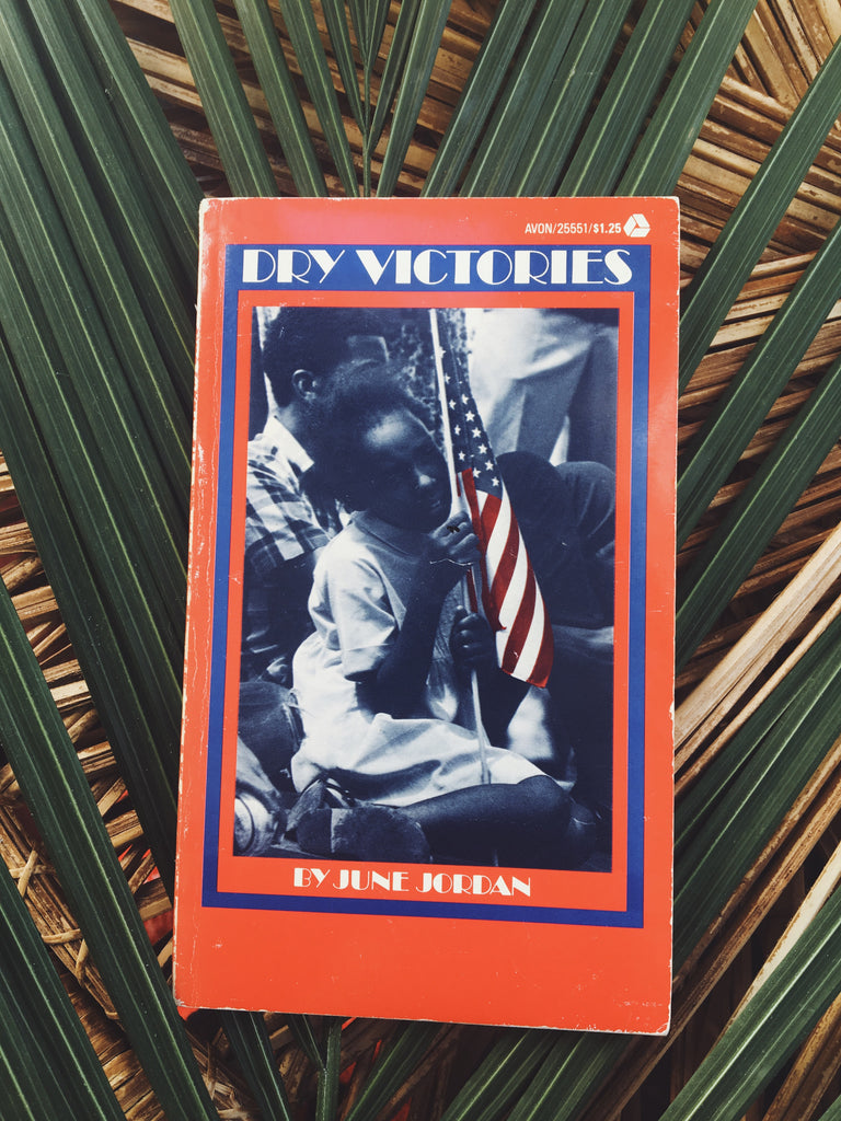 "Vintage Paperback ""Dry Victories"" by June Jordan (1975)"