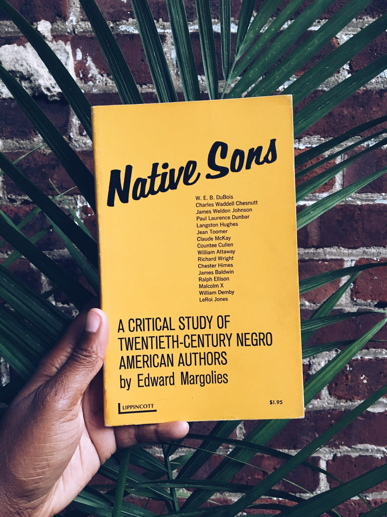 "Vintage Paperback ""Native Sons: A Critical Study of 20th Century Negro American Authors"" (1969)"