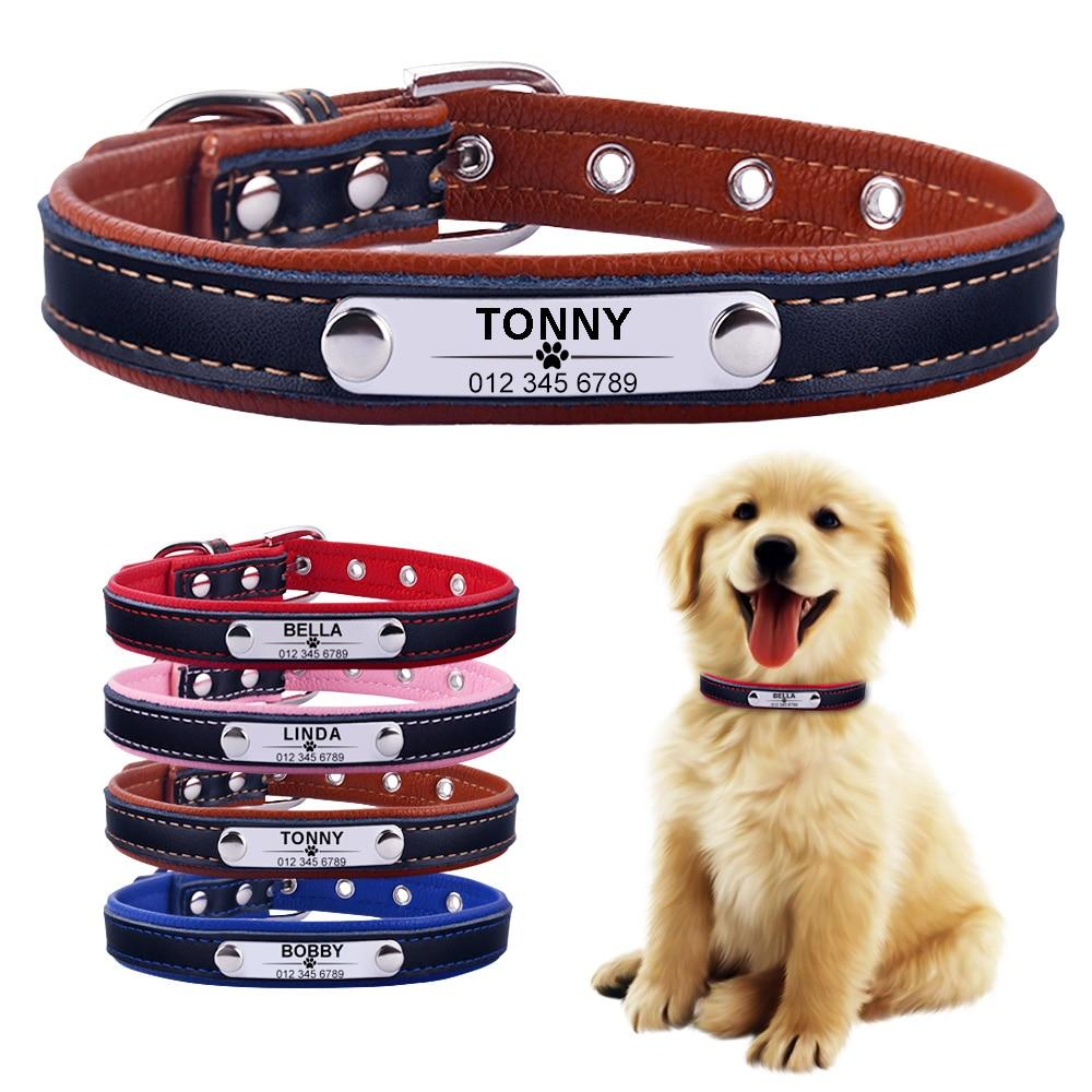 Leather Dog Collar With Personalised Engraved Nameplate Pet Collars & Harnesses BestPet
