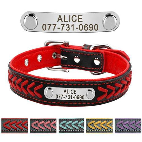 Leather Dog Collar With Personalised Nameplate - BestPet