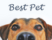 Pet Beds Dog Jackets Pet Leashes Pet Cameras - BestPet