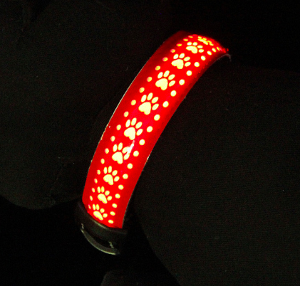 Waterproof LED USB Rechargeable Pet Safety Collar - BestPet