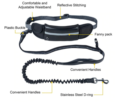 Handsfree Running Bungee Dog Leash With Pouch - BestPet
