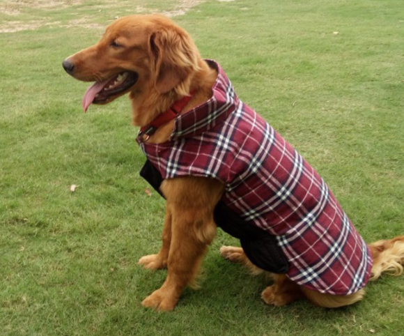 Waterproof Reversible Warm Fleece Dog Coat - BestPet
