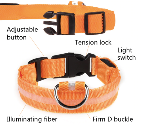 LED Re-Chargeable Dog Collar 5 Colours! Pet Collars & Harnesses BestPet