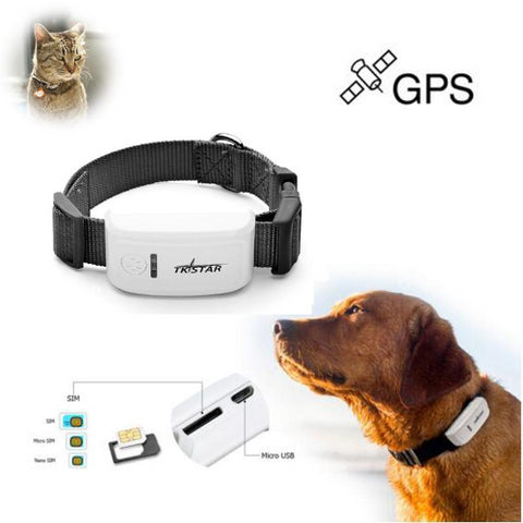 Image of Real-time Tracker for Pet