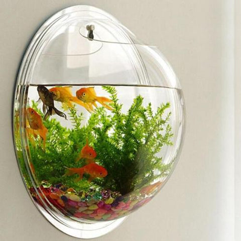 Image of Wall Aquarium