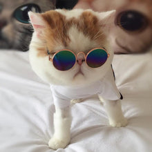 Disassembly™ Cat Sunglasses