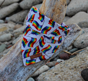 Pride Flags Dog Bandana