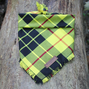 Yellowstone Dog Bandana