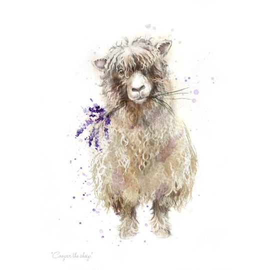 Cooper The Sheep A4 Print