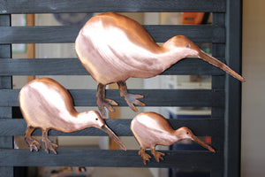 Copper Kiwi Wall Art