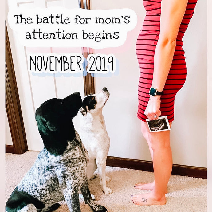 Jaycie: Spotlight on a Doggy Mom turned First-Time Mom to Be