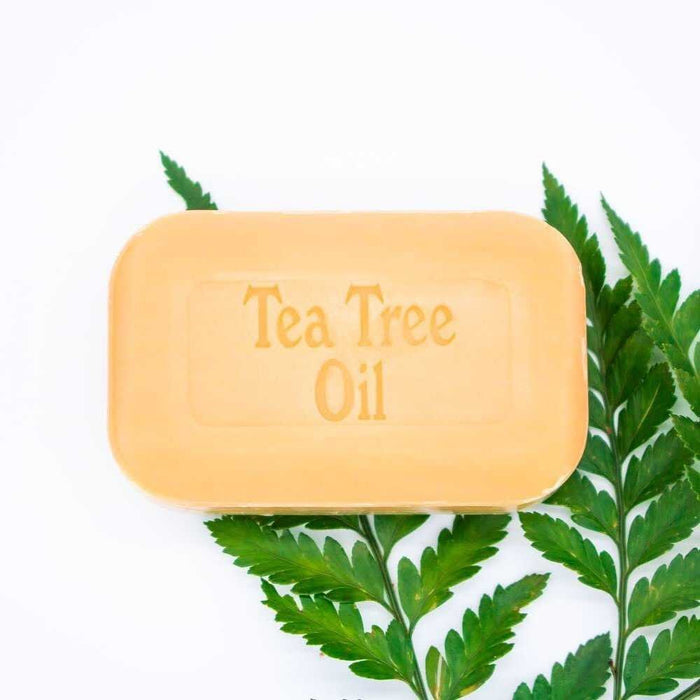 2 Pack - The Soap Works - Tea Tree Soap Bar
