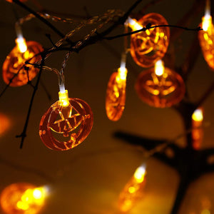 Seasonal Halloween Lights - Tapestry Girls