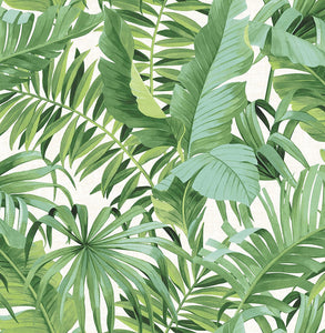 Iconic Palm Leaf Removable Wallpaper - Tapestry Girls