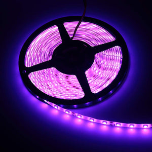 Edge LED Purple Lights - Tapestry Girls