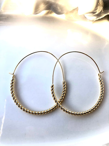 Hoop Spring Earrings