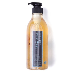 Organic Seeds Hair Shampoo for Oily Scalp (pH 4.5)
