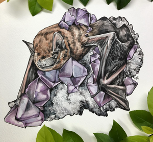 Bat + Crystals