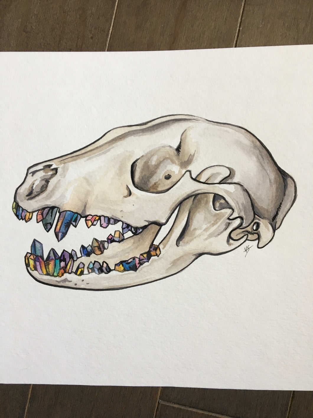 Skull with a grill