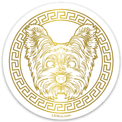 GOLDEN ERA - YORKIE TERRIER - LICKco