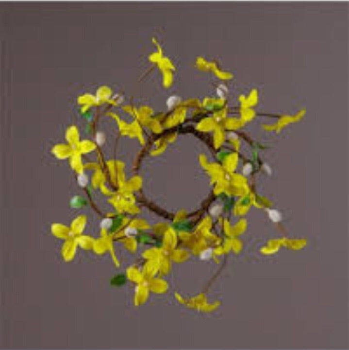 4.5 Forsythia Circle