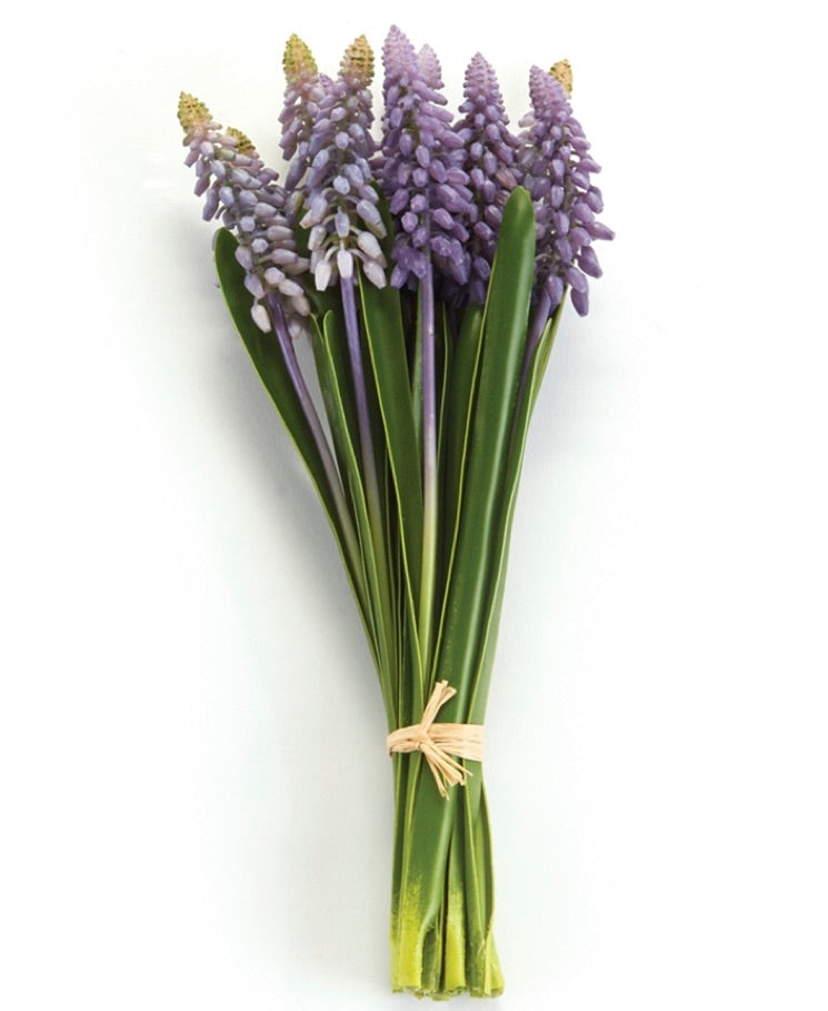 Hyacinth Bunch