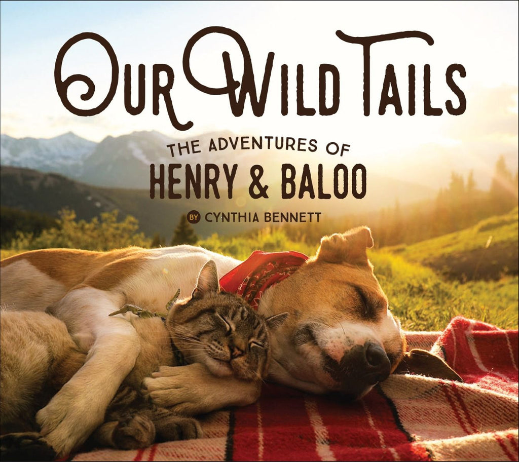 Our WIld Tails: The Adventures of Henry & Baloo Book