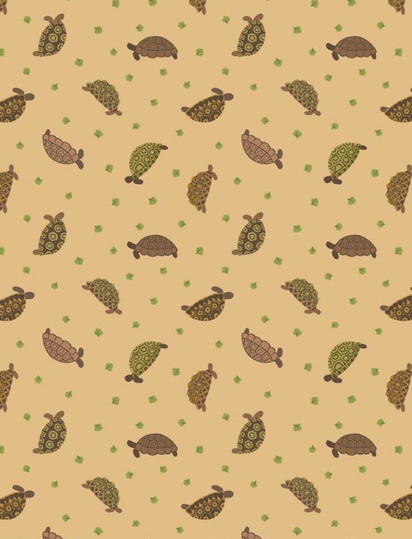 """Small Things Pet"" Tortoises on Sand Background"