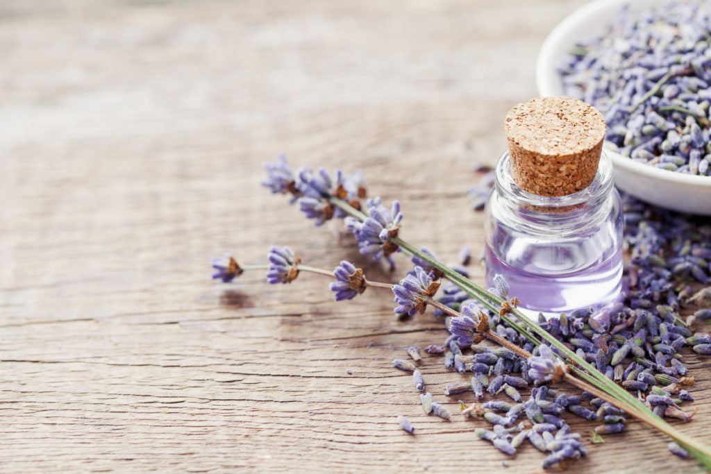 Lavender Oil: Why It's An Essential Oil You Need