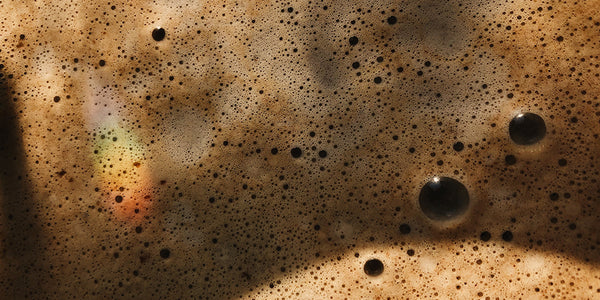 a very close up image of the bubbles from a frothed coffee. The coffee varies in shades of brown and you can see bubbles in the midst of popping. There is also a small rainbo in the bottom left corner of the image as a result of the sun
