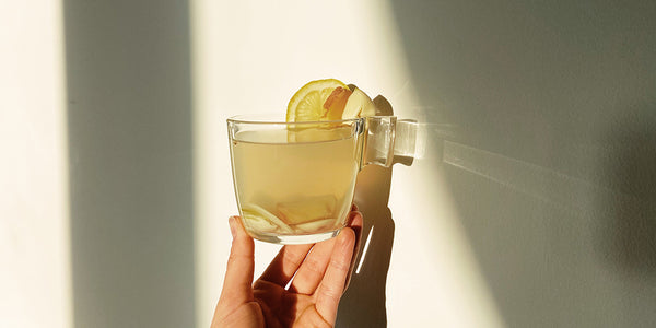 A cup is being held by a hand to a cream background. The natural sunlight has illuminated the cup. In the cup is a light yellow liquid with slices of ginger and lemon in it