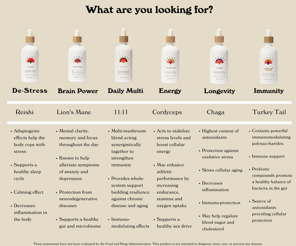 """A chart titled """"What are you looking for?"""" displaying 6 different medicinal mushroom tinctures side by side horizontally and their listed benefits underneath them as bullet points."""