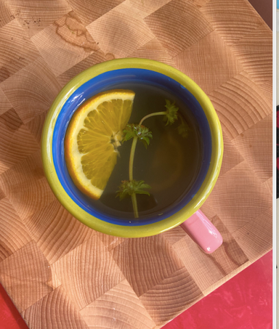 Mug with tea in it and a sprig of thyme and a slice of orange. Mug is placed on a wooden cutting board